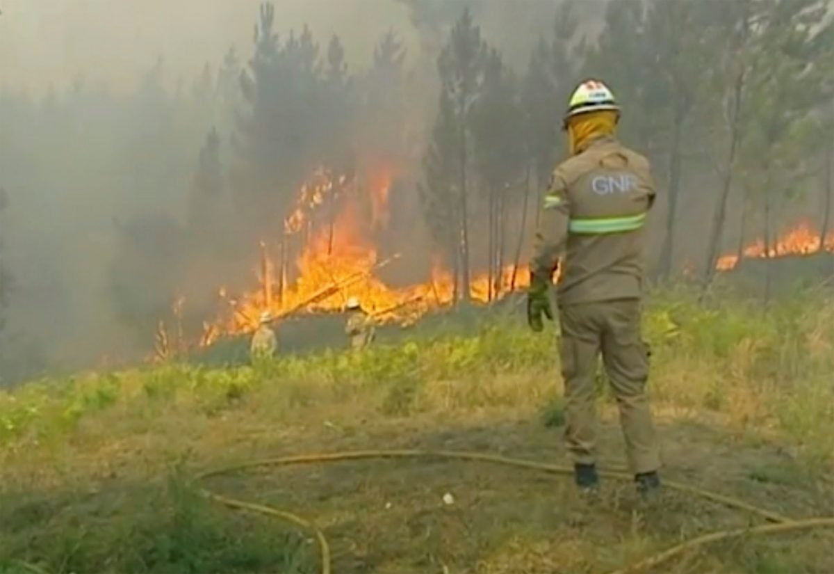 Central Portugal wildfire