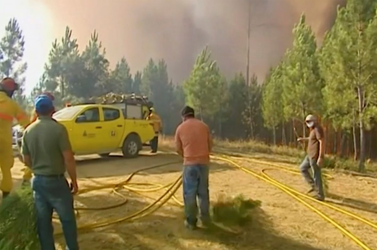 Central Portugal wildfires