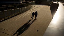 A Healthy Lifestyle may Offset Genetic Risk for Alzheimer's