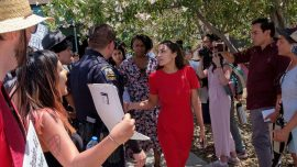 Ocasio-Cortez Claims Border Patrol Forced Illegal Immigrants to Drink Water From Toilet, Agents Respond