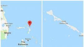 Man Attacked by Shark While Snorkeling in Bahamas: Police