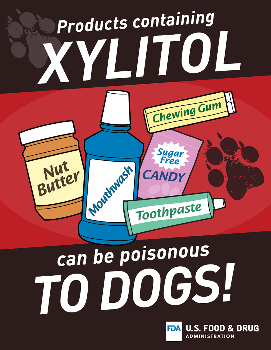 xylitol-dangerous-to-dogs-flyer