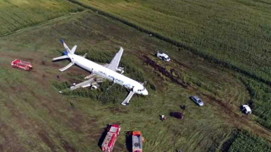 Russian Pilots Land Plane in Cornfield After Bird Strike Disables Plane