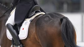 Equestrian Star, 15, Dies in Riding Accident