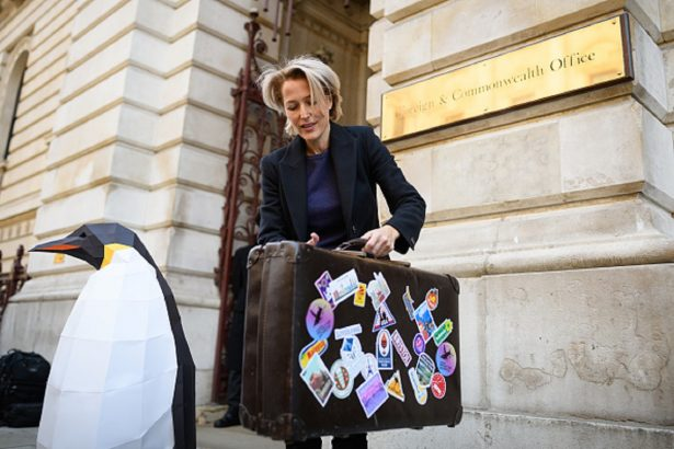 Actress Gillian Anderson takes part in a photocall as Greenpeace hand a petition of over 300,00 signatures calling for protection of the Antartica,