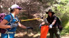 Volunteers Celebrate National Public Lands Day Cleaning up California Hiking Trail