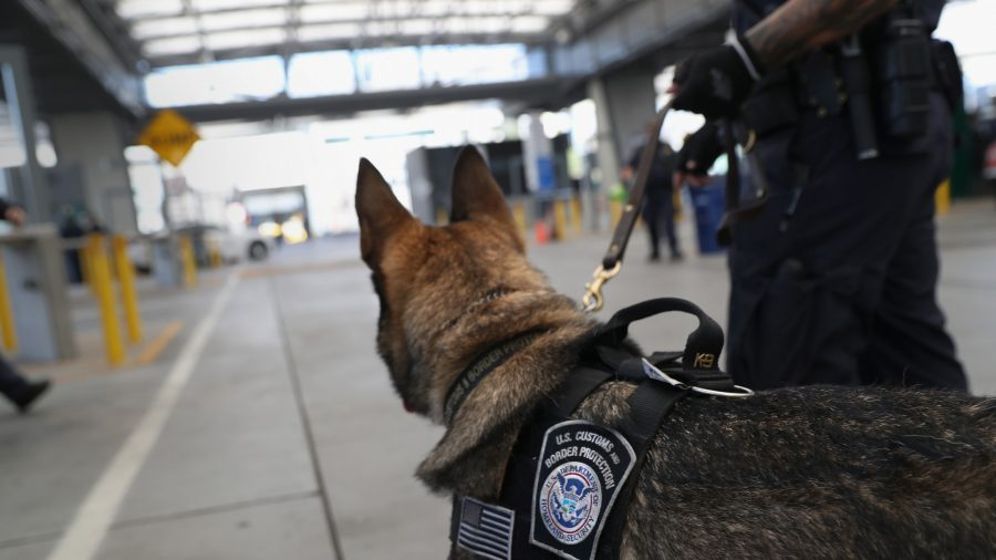 K-9 Sniffs out Missing Toddler Within Minutes in Ohio