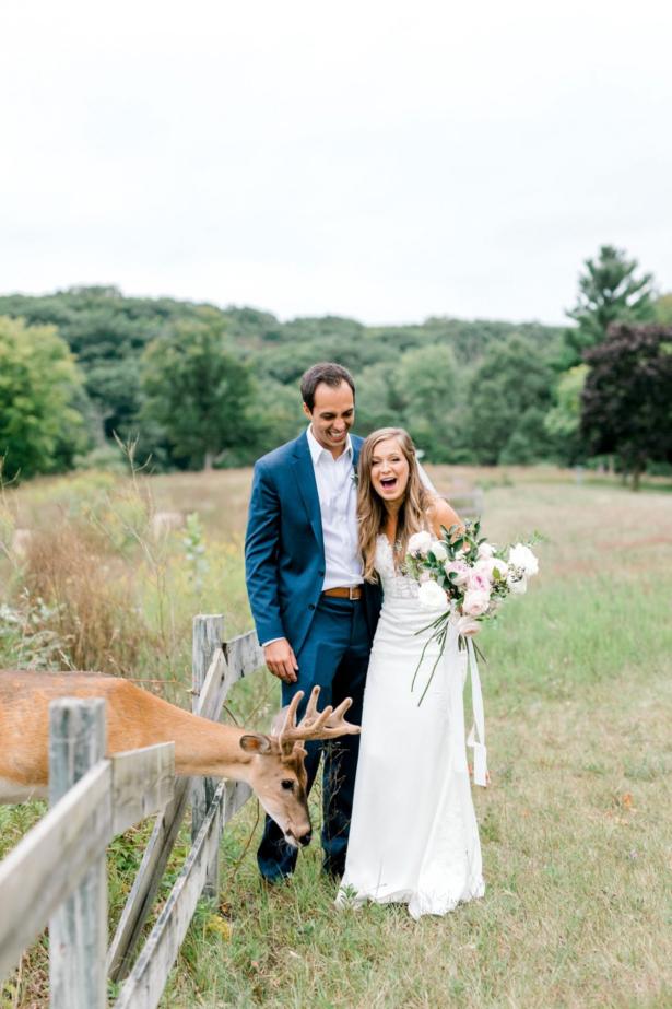 Wild Deer Photobombs Wedding, Eats Bride's Bouquet