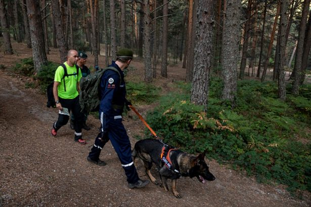 Security forces with a searching dog walk back to the search coordination center
