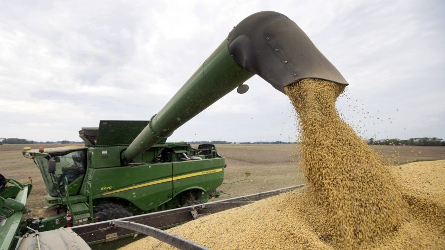 Farmers Welcome China Deal Expected to Boost US Farm Exports by Tens of Billions