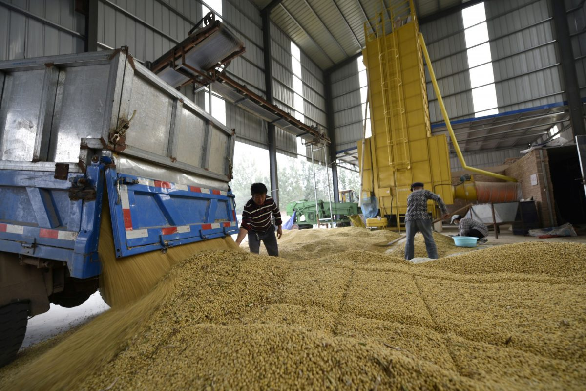 china-us-soybeans-grains-trade