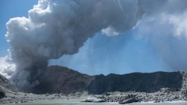 New Zealand Has Ordered More Than 1,290 Square Feet of Skin for Volcano Victims