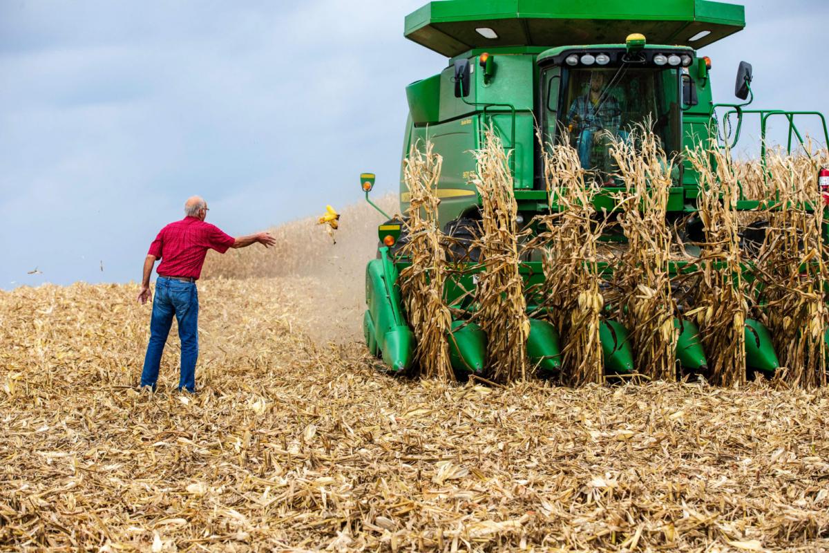Farmer Bill Sorg