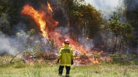 Rainfall Forecast Gives Hope to Australia's Firefighters
