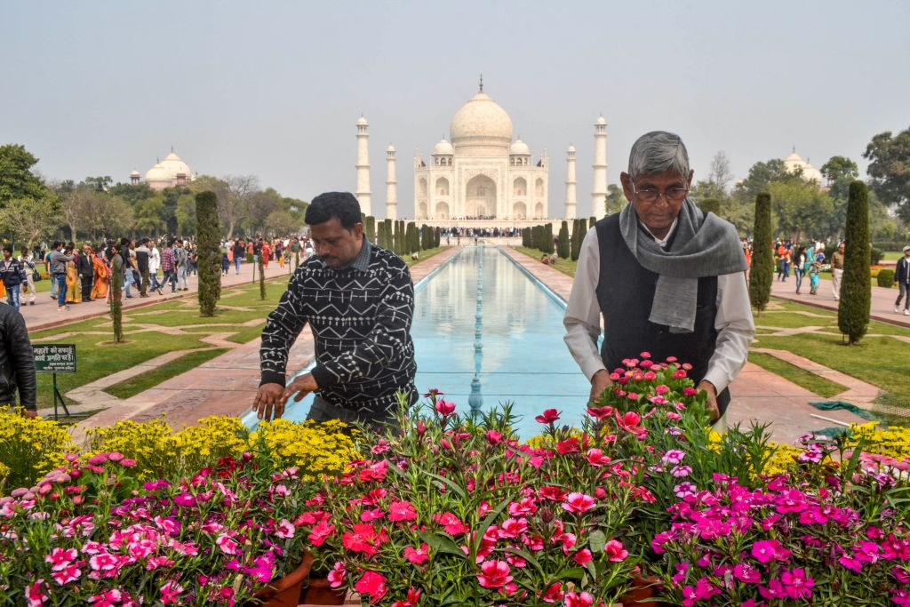 Workers plant and install new flowers in front of the Taj Mahal
