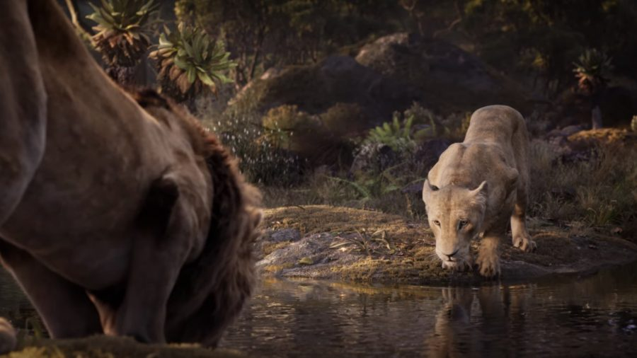 Disney Apologizes to School That Was Charged $250 for Showing 'The Lion King'