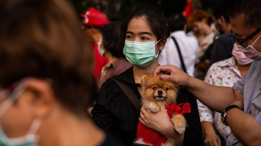 Second Dog Tests Positive for CCP Virus