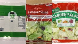 Over 600 People Infected With Cyclospora After Eating Bagged Salad Mix