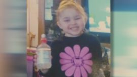 Father Arrested After Body Believed to Be of Missing 3-Year-Old Olivia Jansen Found