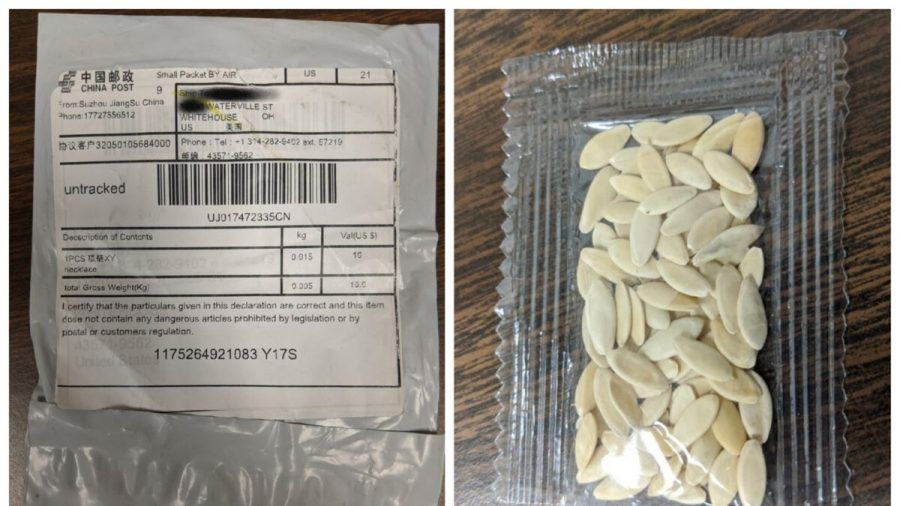 All 50 US States Warn About Unsolicited Seed Packages That Appear to Be From China