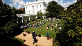Your Guide to Melania Trump's Rose Garden Renovations