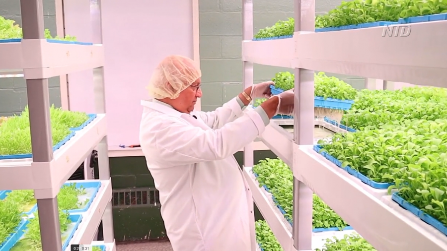 Opportunity Zones: Second Chances Farm