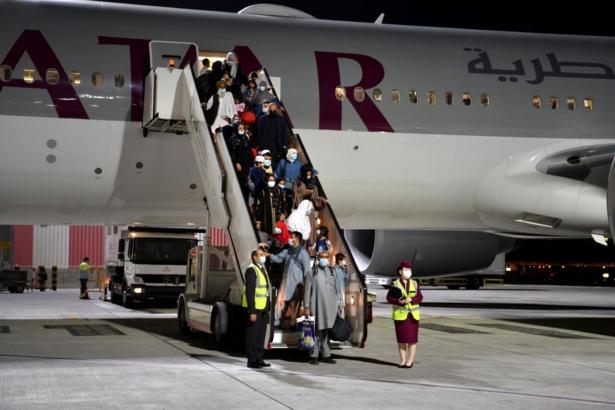 flight qatar