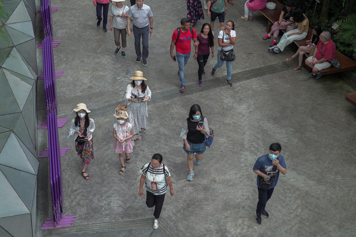 Visitors wearing masks