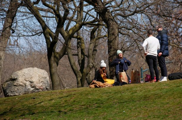 People have a picnic in New York City's Central Park